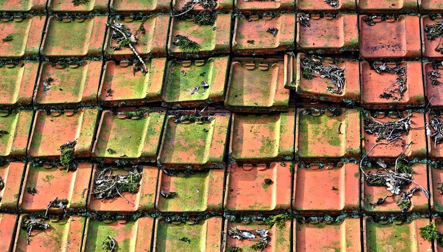 Nasveti za vzdrževanje strehe