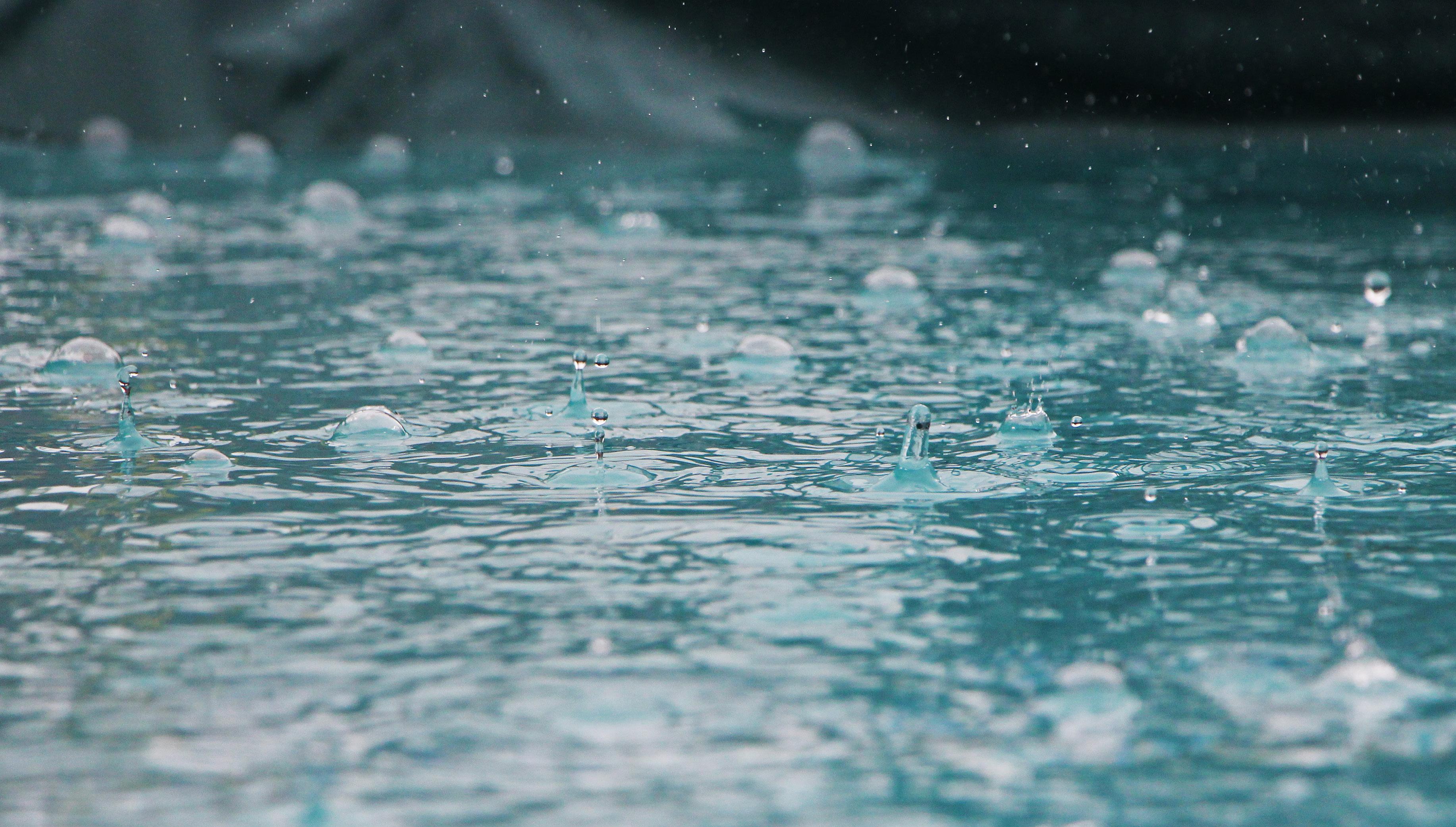 Nasveti za zbiranje deževnice